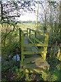 SJ4667 : Footbridge over Milton Brook by Dave Dunford