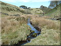 SJ9668 : Along Highmoor Brook by Anthony O'Neil