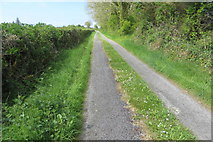 M2173 : Cloonnagappoge townland by Robert Ashby
