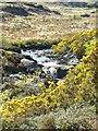 G4415 : Waterfall, Ox Mountains by Gordon Hatton