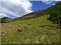 NN1470 : Diagonally up hillside towards Meall an t-Suidhe by Phillip Williams