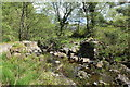 NX3778 : The Missing Bridge, Glen Trool by Billy McCrorie