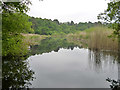 SU9068 : Englemere Pond, Ascot by Robin Webster
