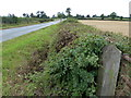 SP8427 : Bletchley Road towards North End, Stewkley by Mat Fascione