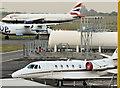 J3775 : CS-DXO, Belfast City Airport (June 2016) by Albert Bridge