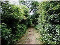 SK4688 : Stoket Lane (Bridleway) by Jonathan Clitheroe