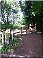 SZ0792 : Talbot Woods: footpath A15 to Alyth Road by Chris Downer
