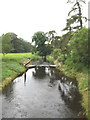 TL8980 : Weir on the Little Ouse River by Adrian Cable