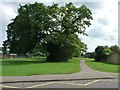 TL1698 : Tree and footpath, west of Longthorpe Primary School by Christine Johnstone