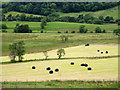 NY4124 : Grass baling in valley between Great Mell Fell and Little Mell Fell : Week 26
