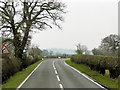 SJ5448 : A49, South of Bickley Moss by David Dixon