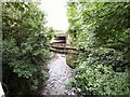 SJ8990 : The last stretch of the River Tame by Gerald England