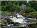 SN2741 : Cenarth falls and water mill, River Teifi : Week 27