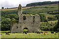 S7956 : Castles of Leinster: Rathnageeragh, Co. Carlow (1) by Mike Searle