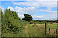 SE0635 : Bridleway between Manywells Height and Cullingworth (2) by Chris Heaton