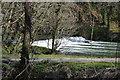 SX4370 : Weir, River Tamar by N Chadwick