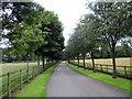 SJ5667 : Driveway to Ottersbank Farm and Mews by Jeff Buck