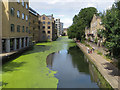 TQ3083 : Regent's Canal, Pentonville : Week 30