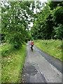 SJ9572 : Crawling up Hacked Way Lane by Richard Law