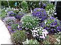 TQ4760 : Flower display at Coolings by Marathon