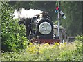 SJ1243 : A locomotive with a face on its front, near Carrog station : Week 32