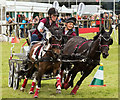NY5224 : The Lowther Show - 13 August 2016 (8) : Week 33 winner