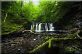 NN7004 : Caldron Linn, upper fall by johnalbiston