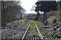 SX4468 : Tamar Valley Line by N Chadwick