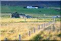 HP6313 : The ruined croft house at Tupton, Haroldswick : Week 34