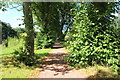 NS5320 : Riverside Walk, Dumfries House by Billy McCrorie