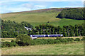 NT4543 : The Borders Railway Line by Mary and Angus Hogg