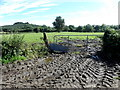 H7453 : Muddy entrance to field, Creevelough by Kenneth  Allen