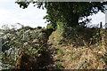 SE2406 : Bridleway to Gunthwaite Hall by Ian S