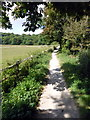 TQ5601 : South Downs Way from Jevington by PAUL FARMER