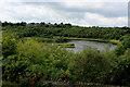 SE1230 : Horton Bank Country Park by Chris Heaton