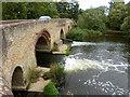 SP9556 : Harrold Bridge by Robin Webster