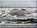 SX7962 : Foxhole School Buildings need some tender loving care : Week 36
