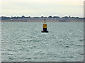 SZ6495 : Outer Spit buoy by Robin Webster