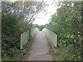 SE3801 : Footbridge over the Dearne Valley Parkway near Hemingfield by John Slater
