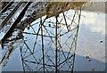 J3674 : Connswater pylon reflection, Belfast (October 2016) : Week 41