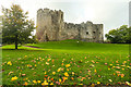 ST5394 : Chepstow Castle in the autumn by Mike Dodman