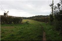 SU9395 : Chiltern Way between Winchmore Hill and Coleshill by Robert Eva