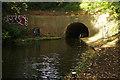 SP1793 : Curdworth Tunnel by Stephen McKay
