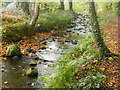 NH7357 : Part of Fairy Glen, Rosemarkie by Julian Paren