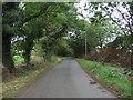 TM3276 : Mary's Lane by JThomas
