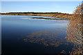 NT1663 : Threipmuir Reservoir by Anne Burgess