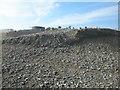 TV6198 : Sediment deposited by the Sospan-Dau on Eastbourne beach by Adrian Diack