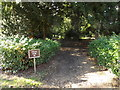 TL8161 : Albana Walk at Ixworth House by Adrian Cable