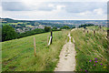 ST7166 : The Cotswold Way heading towards Bath by Bill Boaden