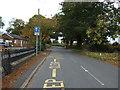 SJ7161 : School Lane, Warmingham by JThomas